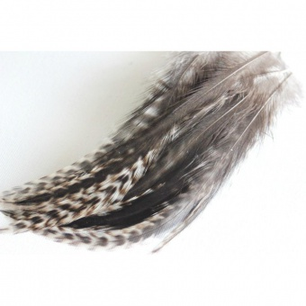 Plume de cheveux brunes pointe grizzly 12 à 15 cm